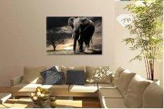 Elefant african 1533