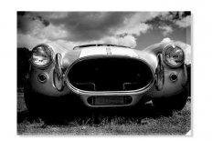 Hot_car 43186